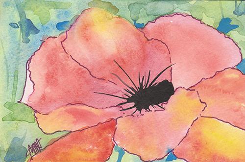 Watercolor poppy LR